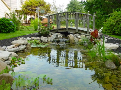 Before & After |Landscape Ideas For Your Backyard-Rochester NY