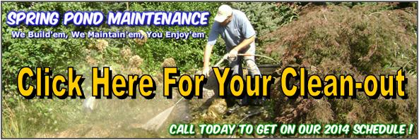 Rochester, Henrietta, Irondequoit,Greece,Chili, & Mendon (NY) Pond Cleaning By Acorn Ponds & Waterfalls. Pond Cleaning Image
