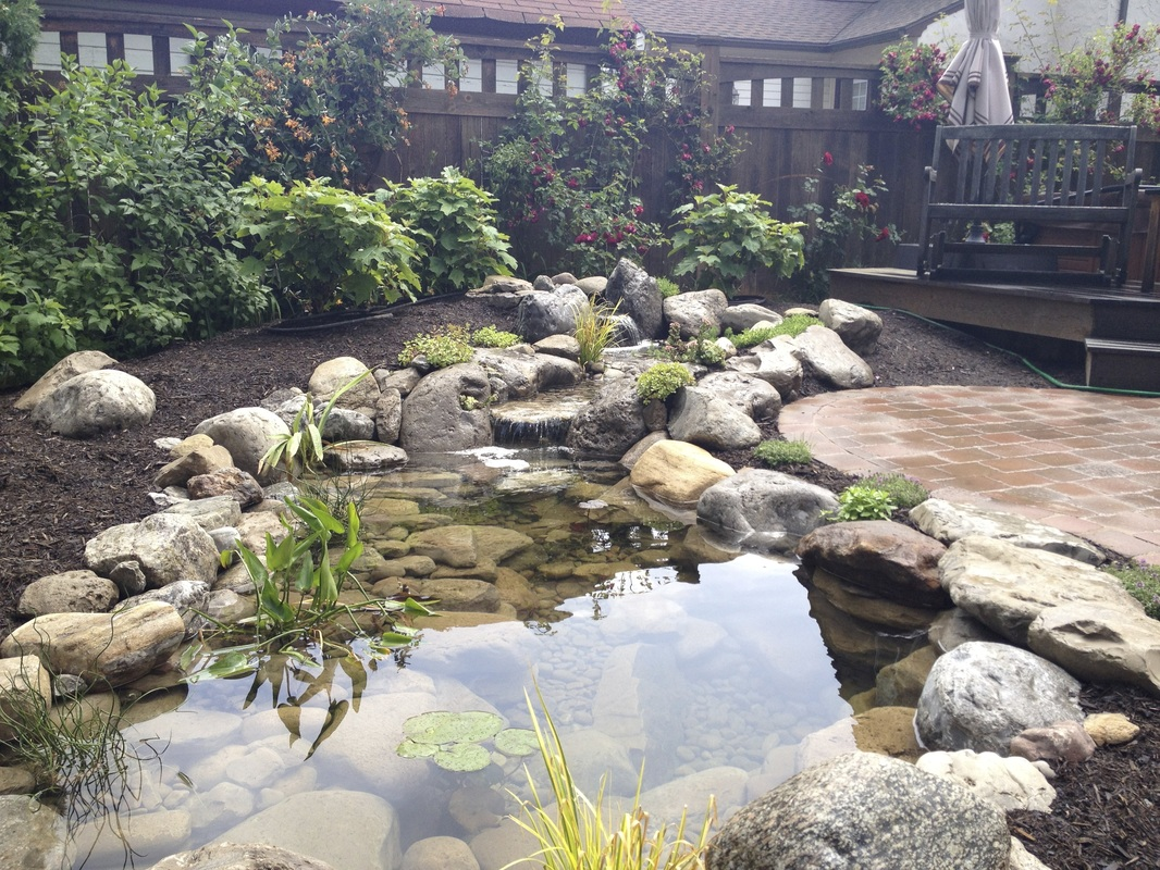 Fish pond filtration installation services rochester ny for Garden pond installers