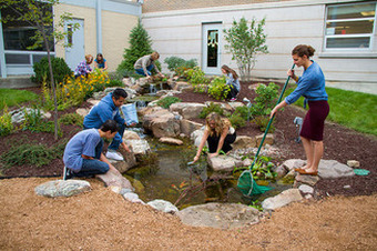 Pond maintenance installation service contractors for Fish pond installers