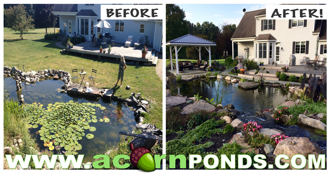 Pond Renovation In Rochester New York (NY)