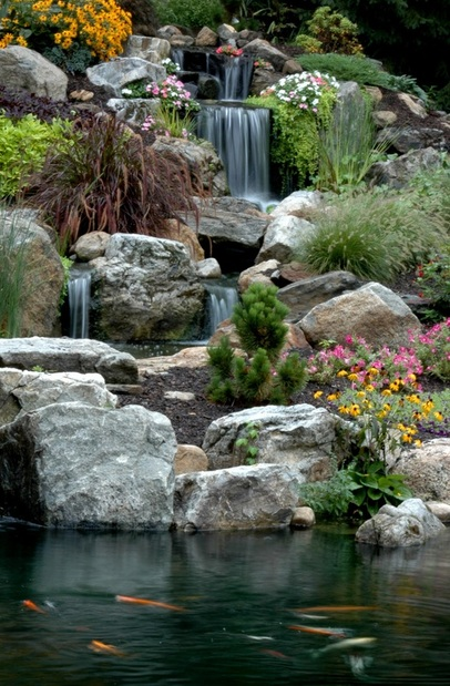 Fish (Koi) Pond Maintenance In Chili & Webster, Monroe County NY By Acorn Ponds & Waterfalls