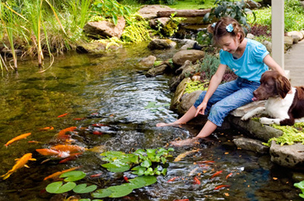 Low Maintenance Water Features & Child Safe Features For The Family In Rochester, NY By Acorn Ponds & Waterfalls. Image
