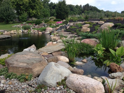 Pond leak repair by Acorn Ponds & Waterfalls of Rochester NY