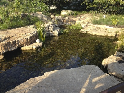 Koi pond repair by Acorn Ponds & Waterfalls of Rochester NY