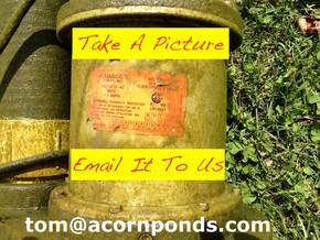 Have a pro [Acorn Ponds] service your water feature pond pump in Rochester New York (NY) 585.442.6373