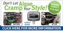 Pond Algae Control, Pond Algae Solutions Rochester, NY By Acorn Ponds & Waterfalls. Image