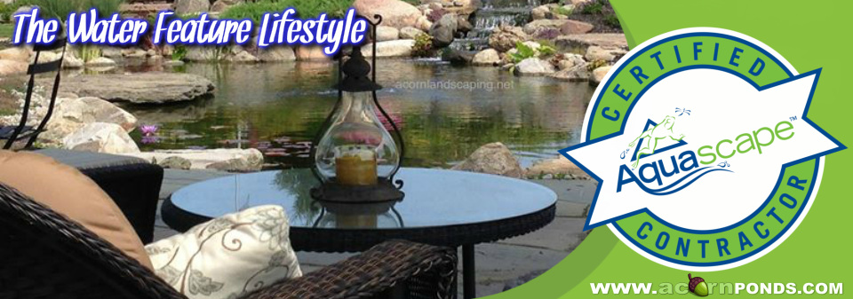 Henrietta, Irondequoit, Mendon, Greece, Chili (NY) Water Feature Lifestyle - Let's get started on your backyard escape! Image
