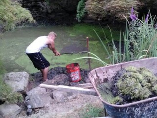Farm pond and retention pond filtration & installation service in Rochester New York (NY)
