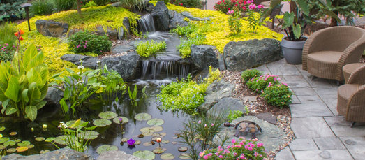 f you are new to water gardening and need help or advice with the design of your koi fish pond in Rochester New York (NY)…