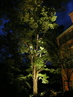 Have a professional lighting contractor install your LED Outdoor Lighting In Rochester New York (NY)
