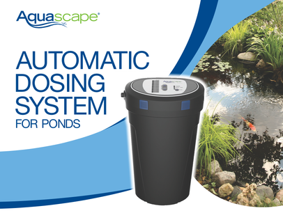 Enjoy your low maintenance koi pond with addition of an automatic beneficial bacteria dosing system in Rochester New Your (NY)