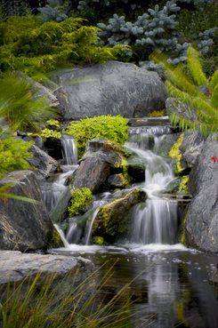 Ed Beaulieu of Aquascape Inc. Backyard Waterfalls. Image