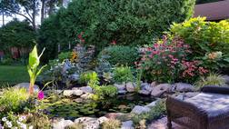 Escape to an area of paradise with a backyard koi pond gift certificate idea in Rochester New York (NY)