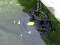 Get your koi pond pump & filtration system serviced by a certified pond contractor in NY - Acorn Ponds & Waterfalls