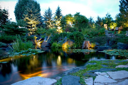 Water feature & koi pond lighting ideas for outdoor living areas in Rochester (NY) by LED Landscape Lighting contractors - Acorn Ponds & Waterfalls