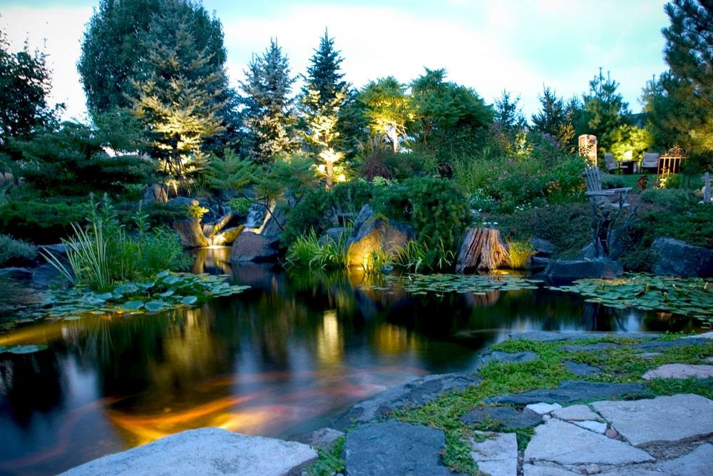 Led Underwater Pond Water Feature Lighting Services Rochester Ny Acorn Ponds Waterfalls