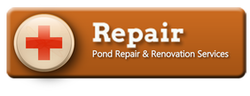 Pond leak repair & renovation services in Brighton & Pittsford (NY) By Acorn Ponds & Waterfalls