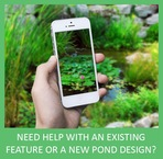 Looking for koi pond or water garden deign, consultation or advice in Rochester New York (NY) ? 585.442.6373