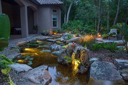 Water garden lighting & landscape lighting ideas in Rochester New York (NY) by LED Lighting Contractors - Acorn Ponds & Waterfalls