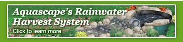 Rainwater collection Rochester, Monroe County NY