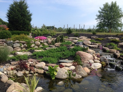 pond contractor services in Rochester NY by Acorn Ponds & Waterfalls