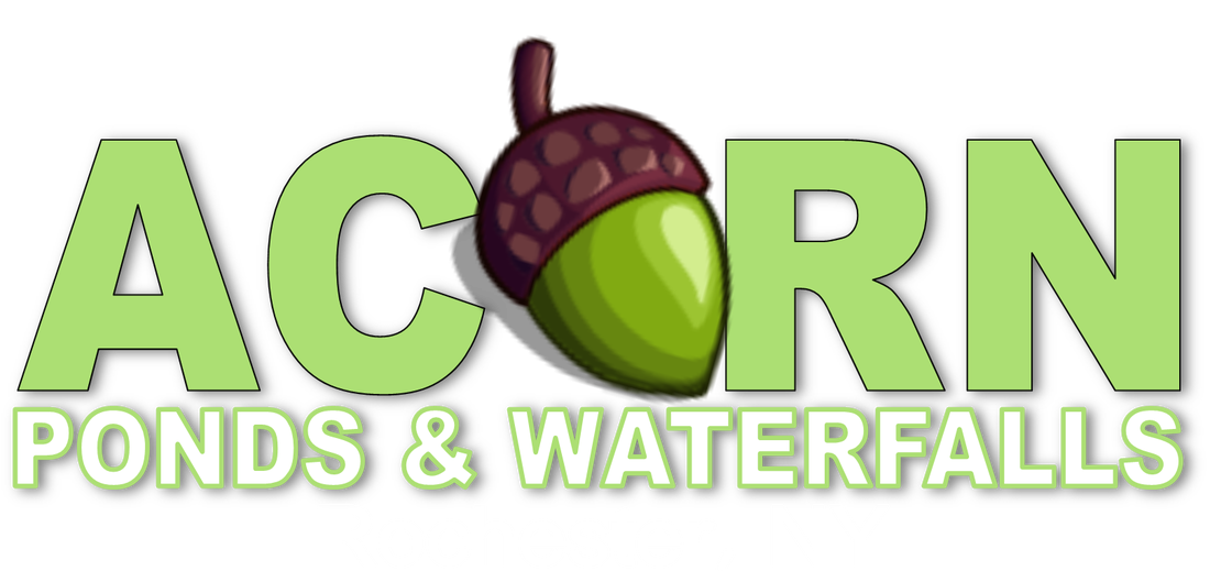 Pond-Contractor-Rochester-NY
