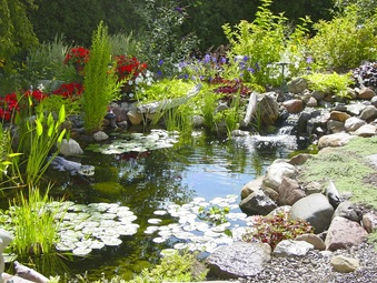 Pond Maintenance|Installer|Repair|Contractor|Landscape Design-Rochester NY