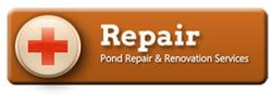 Pond Repair Help & Advice In Rochester (NY) By Certified Pond Contractors - Acorn Ponds & Waterfalls. Pond Repair