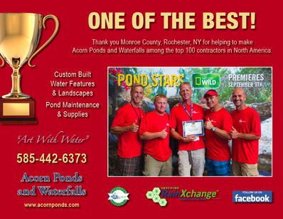 Top 100 Pond Contractor Award In Rochester NY - Acorn Ponds & Waterfalls