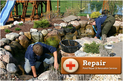 Have your fish pond serviced or repaired by certified pond contractors (Acorn) in Rochester New York (NY)