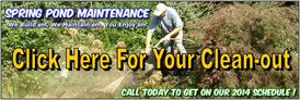 Fish Pond Cleaning & Maintenance Services In Webster, Penfield & Irondequoit NY - Acorn Ponds & Waterfalls. Image