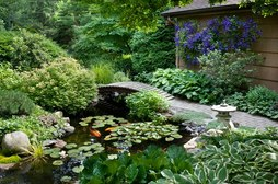 Bridges for koi fish ponds offer landscape ideas for Rochester New York (NY) homeowners - Acorn Ponds & Waterfalls