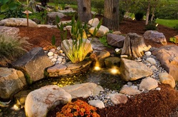 Driftwood for natural looking streams, waterfalls & ponds in Rochester New York (NY) - Acorn Ponds & Waterfalls 585-442-6373