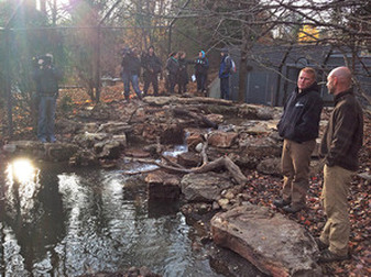 PondStars, Water Feature Pond Construction With Wetland Filtration Installation Service