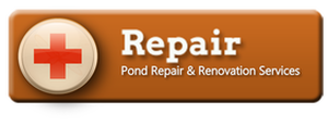 Pond - Waterfall Leak Repair & Restoration Services - Acorn Ponds & Waterfalls (585) 442-6373