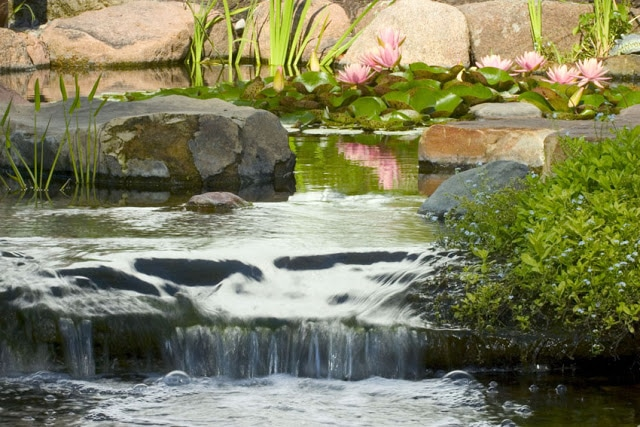 Healing water features in Rochester NY