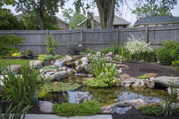 Backyard pond design ideas in Rochester NY or near me