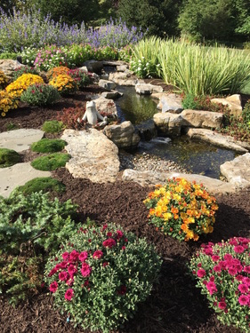 What should I do to my fish pond before winter in Rochester (NY) or near me?