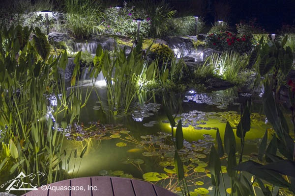 Pond & Garden Lighting Services In Rochester (NY) New York Near Me