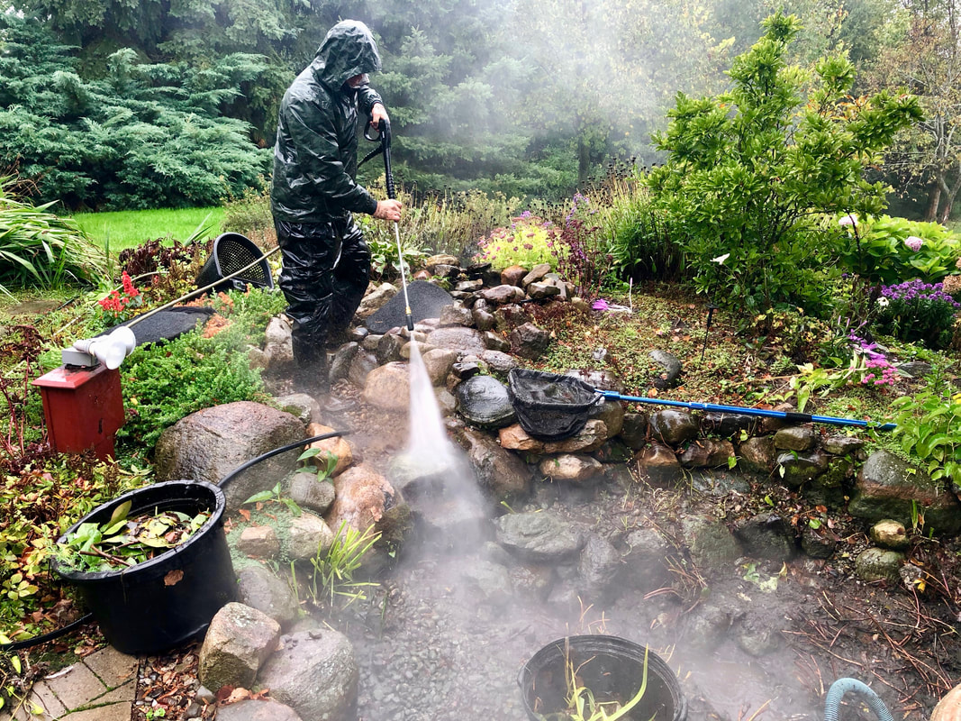 When Is The Best Time To Clean My Fish Pond In Rochester (NY)