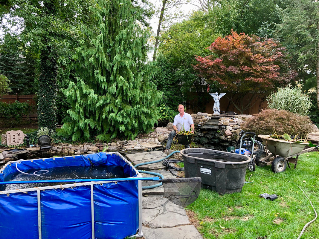 Pond service company and certified pond contractors of Rochester New (NY) - Acorn Ponds & Waterfalls