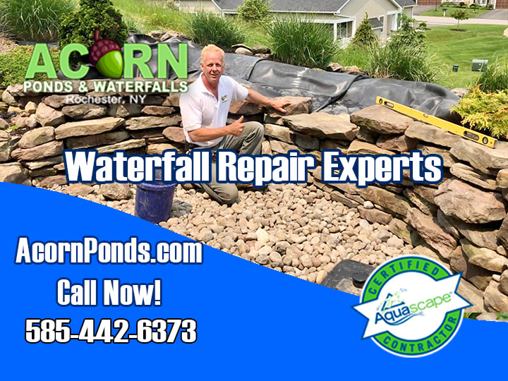 Acorn Ponds & Waterfalls - Pond Maintenance|Installer|Repair